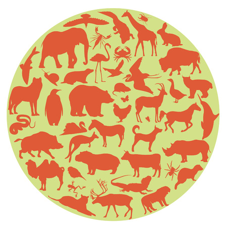 Animals  Set for you design Vector