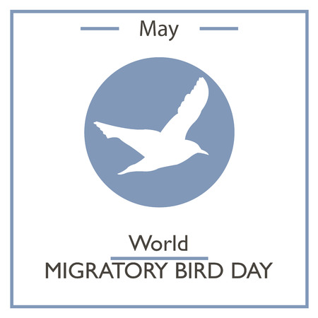 migratory: World Migratory Bird Day, May. Vector illustration for you design, card, banner, poster and calendar