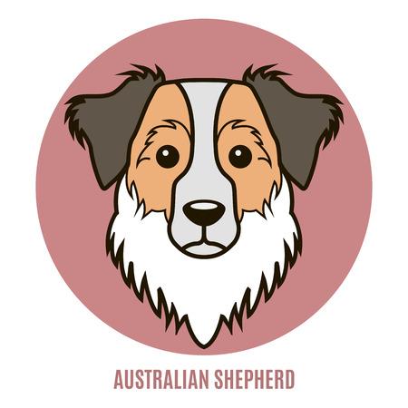 Portrait of Australian Shepherd. Vector illustration in style of flat Illustration