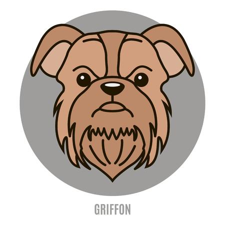 Portrait of Griffon. Style of flat Иллюстрация