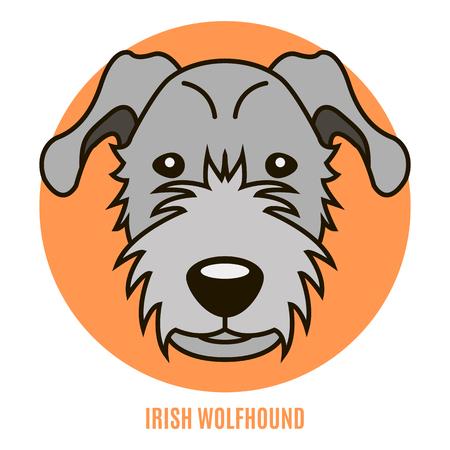 Portrait of Irirsh Wolfhound. Style of flat Illustration