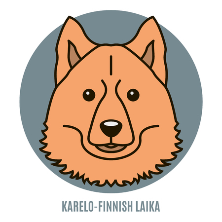 Portrait of Karelo-Finnish Laika. Style of flat