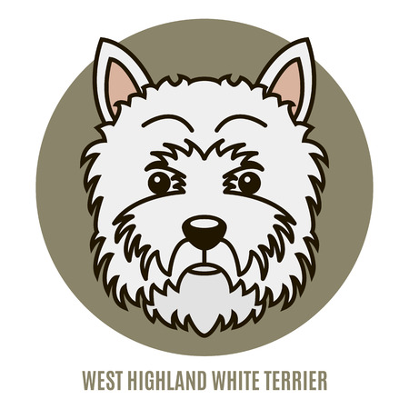 Portrait of West Highland White Terrier. Vector illustration in style of flat Illustration