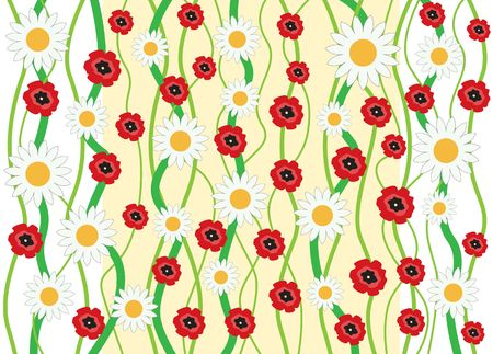 The flowers camomile and poppy background photo