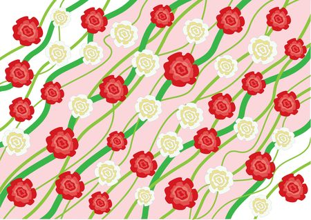 The flowers red and white roses background Vector