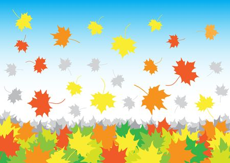 falling maple leaves in heap on the white background Stock Vector - 6744480