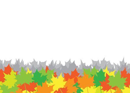 The maple leaves on the white background Stock Vector - 6744471