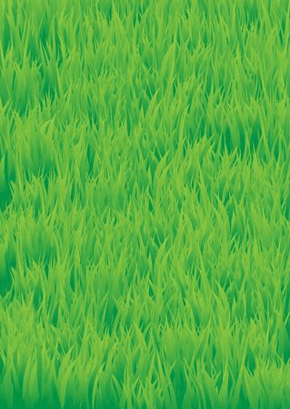 The green grass background.  Stock Photo - 6744544