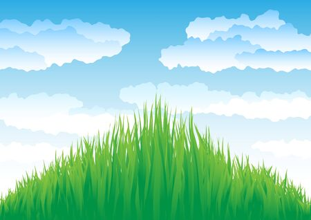 Growing grass on a clouds sky background Stock Photo - 6744543
