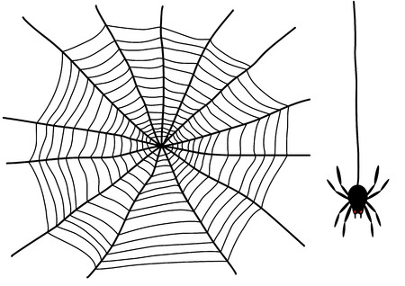 black spider and spider web isolated on the white background