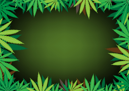 The green hemp, cannabis leaf dark framework background