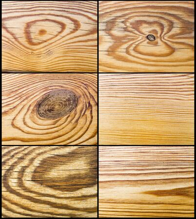 The abstract wood decor texture, pine decoration set photo
