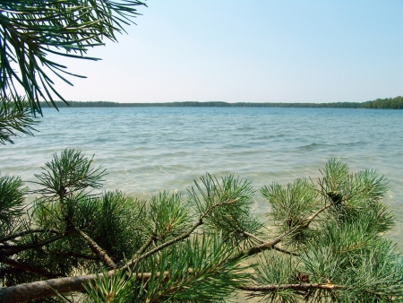The beautiful wild nature landscape, lake in the pine woods Stock Photo - 15652692