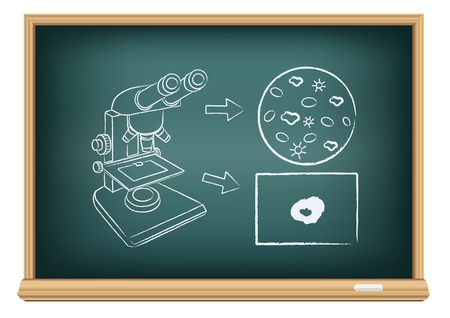 The blood under a microscope drawn on the blackboard on the white background Illustration