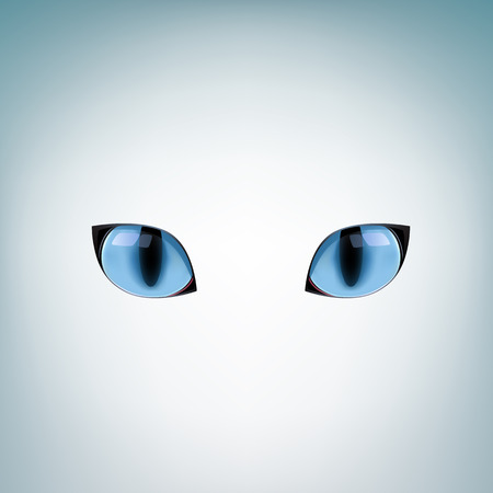 bengal light: The blue cat eyes on a light mesh background