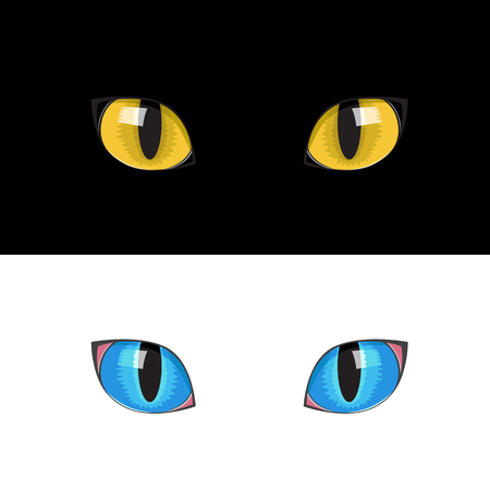 eyes: The yellow cat eyes on the black background
