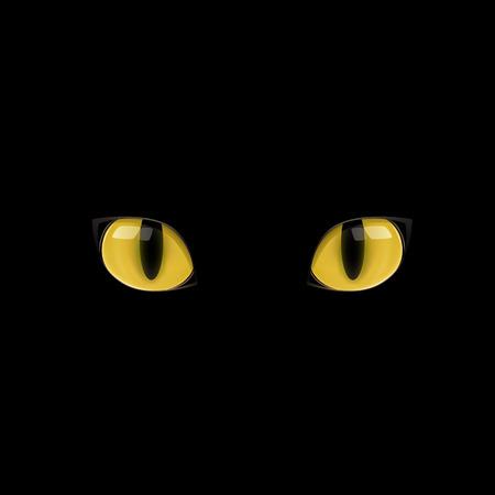 Желтые глаза кошки на черном фоне