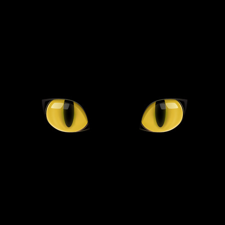 The yellow cat eyes on the black background