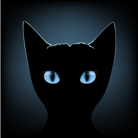 cute kitten: Silhouette of black cat with blue eyes on a dark background