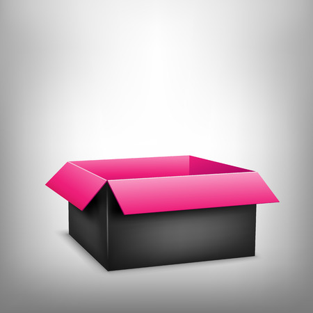 paperboard packaging: 3D black outside pink inside open paper package on light white mesh background