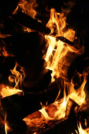 log fire: Closeup burning log fire in fireplace. Barbecue coal blazing flame