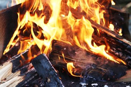 log fire: Barbecue blazing log fire. Burning fireplace. Closeup flame