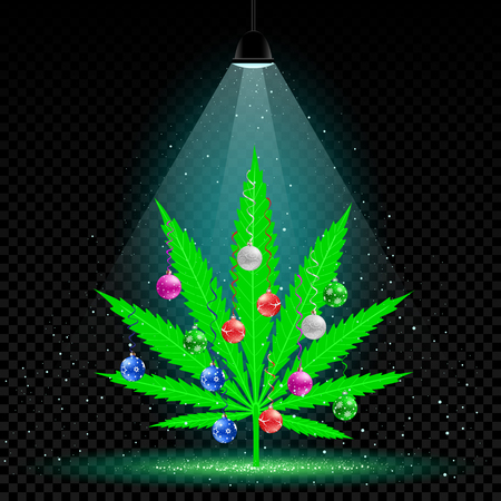 Christmas hemp tree with holiday balls grows in lamp lights. Snow falls on background. Growing cannabis marijuana plant with colorfull ball