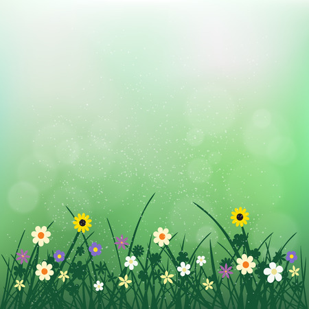 Wild flowers plant and grass on green blurry bokeh background. Nature spring or summer abstract flora.