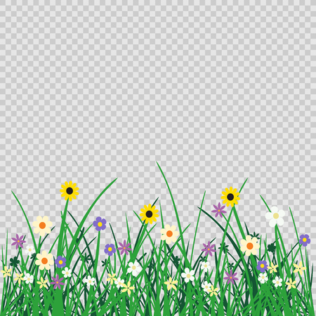 Wild flowers plant and grass on transparent background. Nature spring or summer abstract flora mockup. Chamomile cornflower violet snowdrop grow on natural agriculture backdrop. Ilustrace