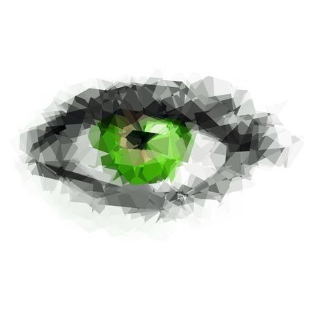 eye green: Mujeres de ojos verdes creados a partir de pol�gonos Vectores