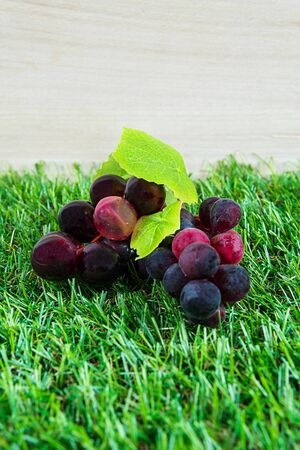 elite: grapes are made from plastic and natural grass.