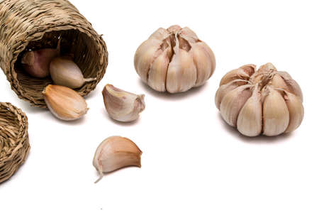 Reliance garlic harvest Isolated and a white background. ( clipping path )