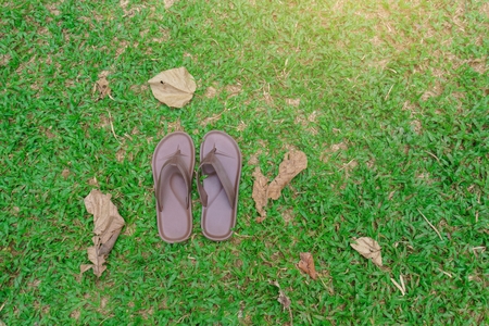 Slippers that were placed on the green grass.and travel to watch the nature of trees and forests.and to relieve stress. Use as a background.