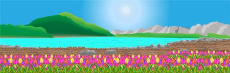 Beautiful natural landscape vast and colorful flowers. And making me feel refreshed and relaxed the image panorama.