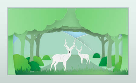 Vector nature and forest where the deer and wild animals live.And the plentiful world and covered with the green of the nature and a papercut and placed in the room and Or used as background