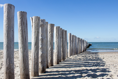 wooden breakwater at north sea beach