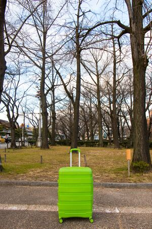 winter garden: A green luggage in front of winter garden in Japan.