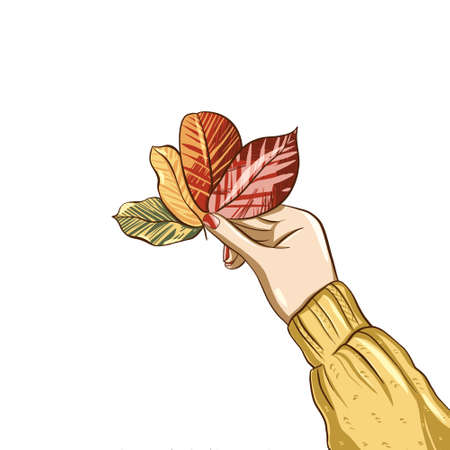 Female hand holds fallen autumn colorful leaves. Digital hand drawn in flat style illustration isolated on white background. Autumn mood and memories. Good for Thanksgiving decoration card, print. 免版税图像
