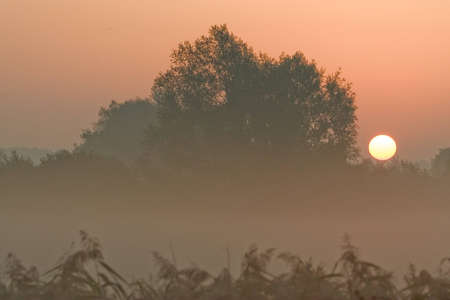 Sunrise estate Meinerswijk Holland