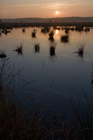 reclamation: Moorland, Holland