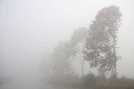 Fog Oude Vaart The Netherlands