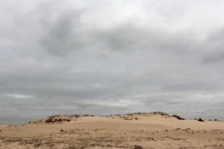 Dunes on the Veluwe, Netherlands Stock Photo