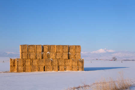 longs peak: Harvested hay stack in a snowy field. Colorados Longs Peak and the front range in the background