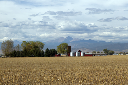mountain peek: A farm sits in a harvested field with Longs Peak and the front range in the background