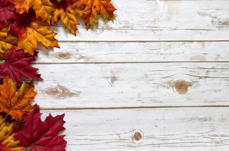 Kleurrijke herfstbladeren in rood, oranje en gele rand een witgekalkte houten plank bord met ruimte voor kopie ruimte Stockfoto