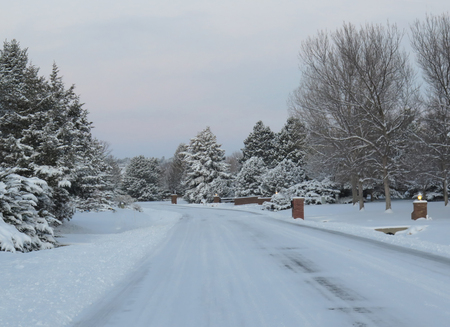 Snow Plowed Residential Street in the Winter with snow cover trees at sunrise Stock fotó