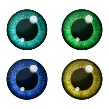 벡터 색 눈 컬렉션입니다. 인간의 눈동자