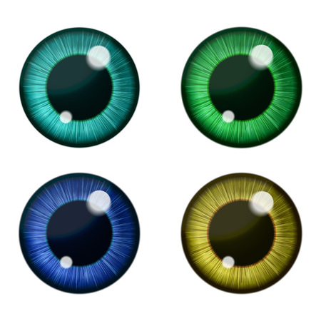 eye closeup: Vector color eyes collection. Human pupil Illustration