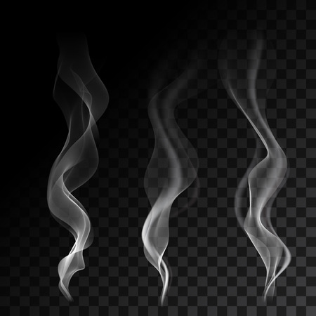White steaming cigarette smoke waves on transparent background. Vector illustration.