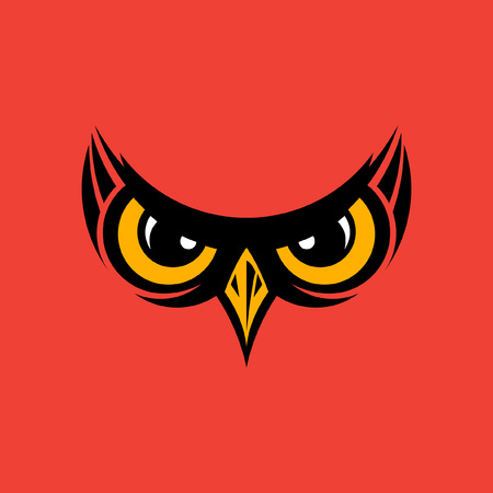 Vector illustration of owl eyes and beak  background
